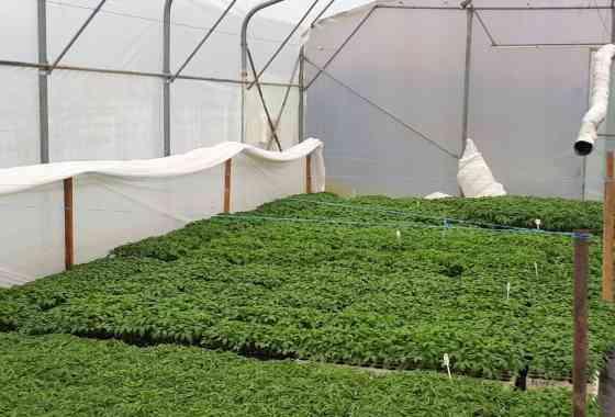 Projekt Rajski vrt ulazi u višu fazu